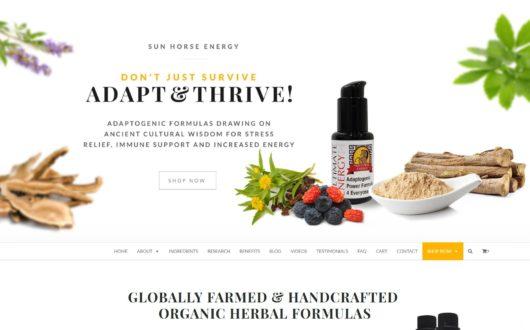 Logo, Website Design & Packaging Design in Encinitas CA
