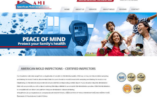 Mold Inspection Website, LA